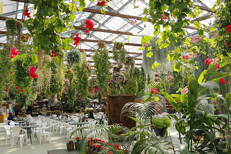 花いっぱいカフェスペース