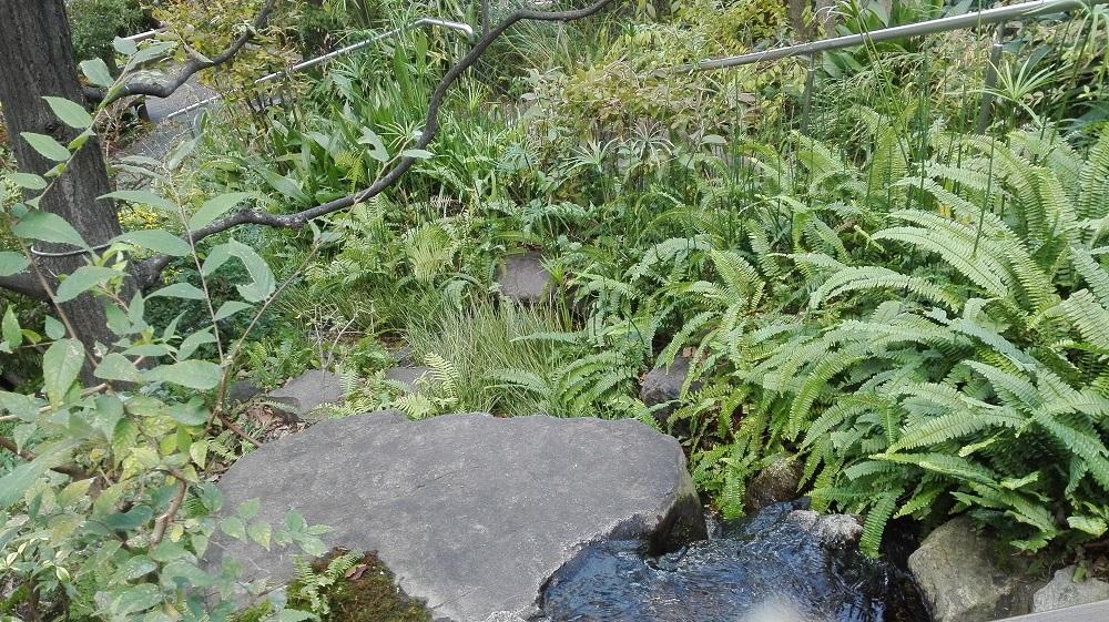 水が流れているパークスガーデン