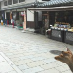 奈良東大寺前