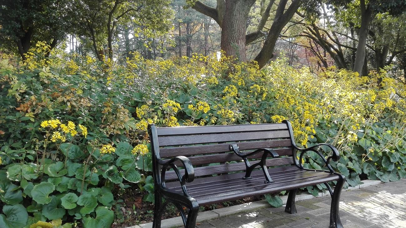 靭公園ベンチ