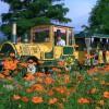 【関西版】味覚狩りも!バーベキューも!青空の下でおいしいごちそう&自然いっぱいの農業公園&農園